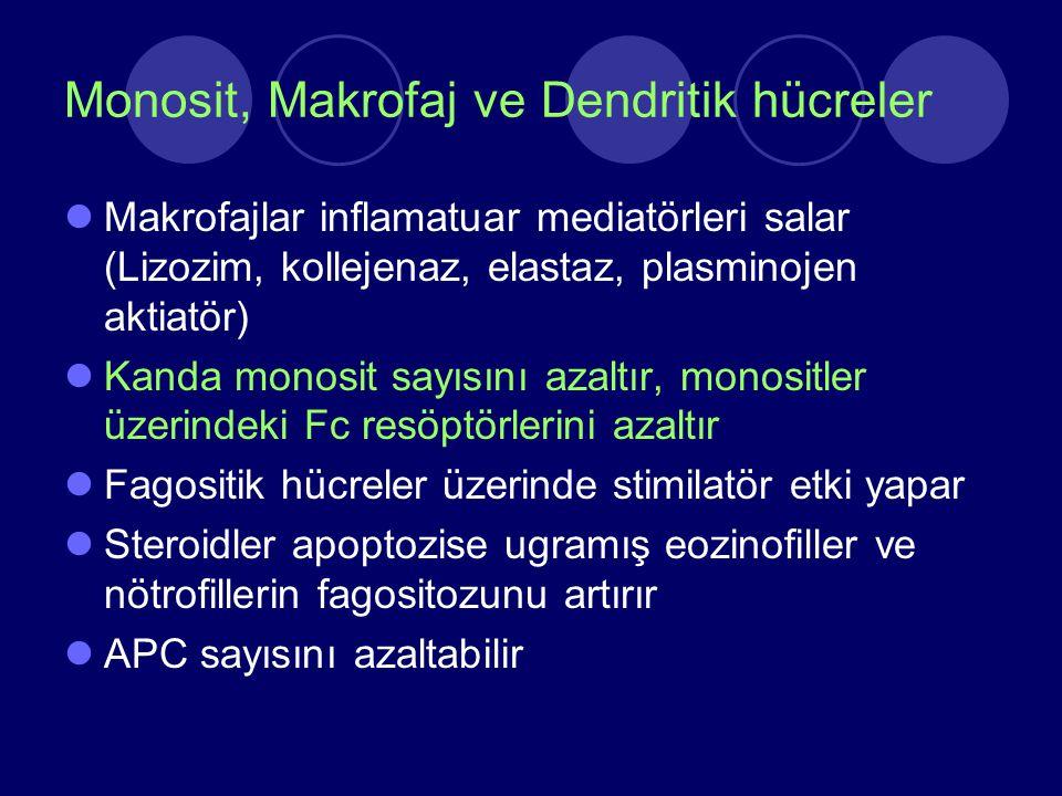 Monosit, Makrofaj ve Dendritik hücreler