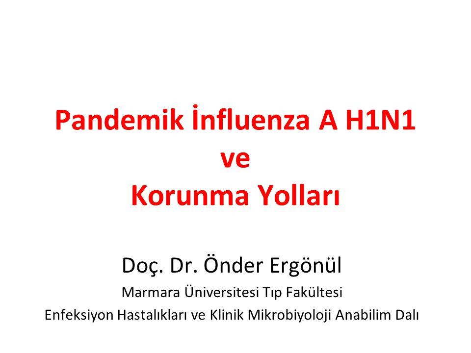 Pandemik İnfluenza A H1N1 ve Korunma Yolları