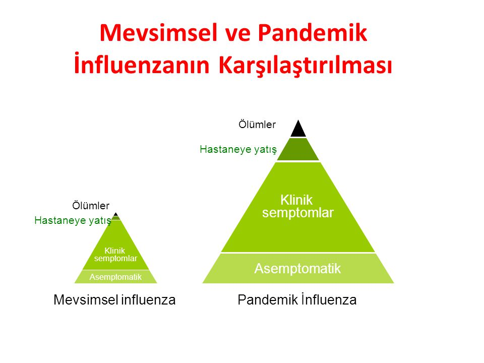 Mevsimsel ve Pandemik İnfluenzanın Karşılaştırılması
