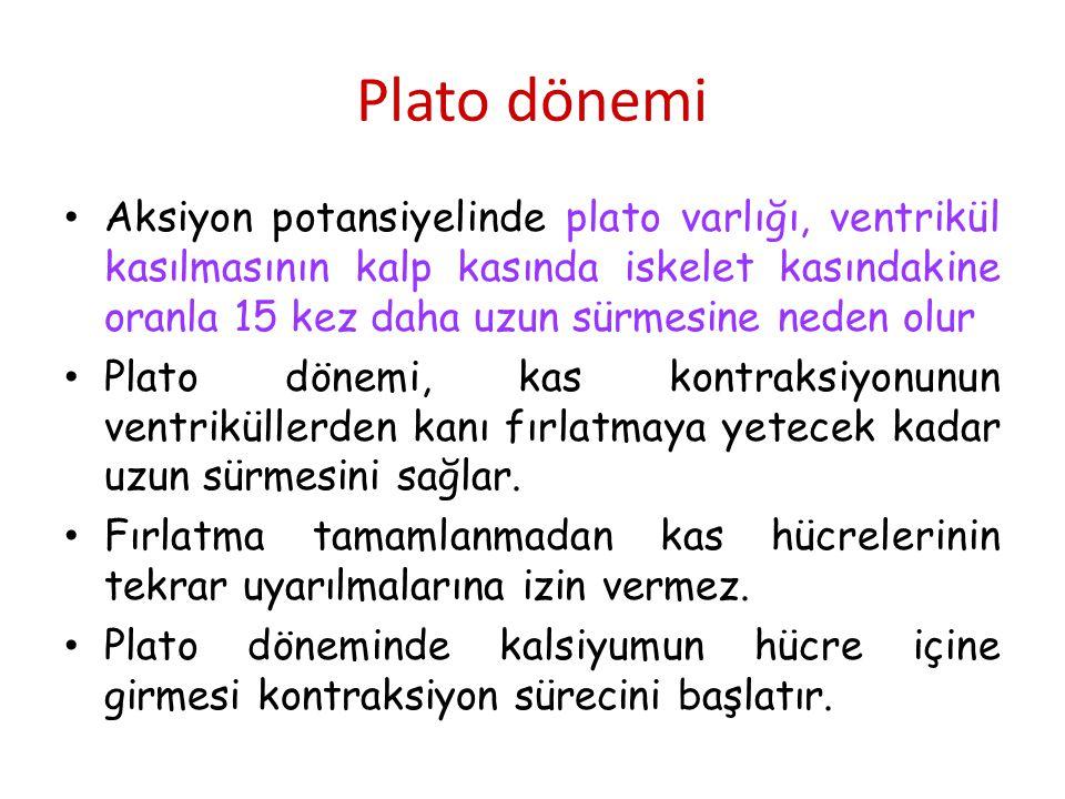 Plato dönemi