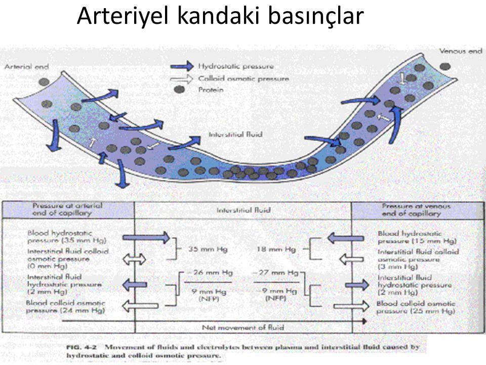 Arteriyel kandaki basınçlar