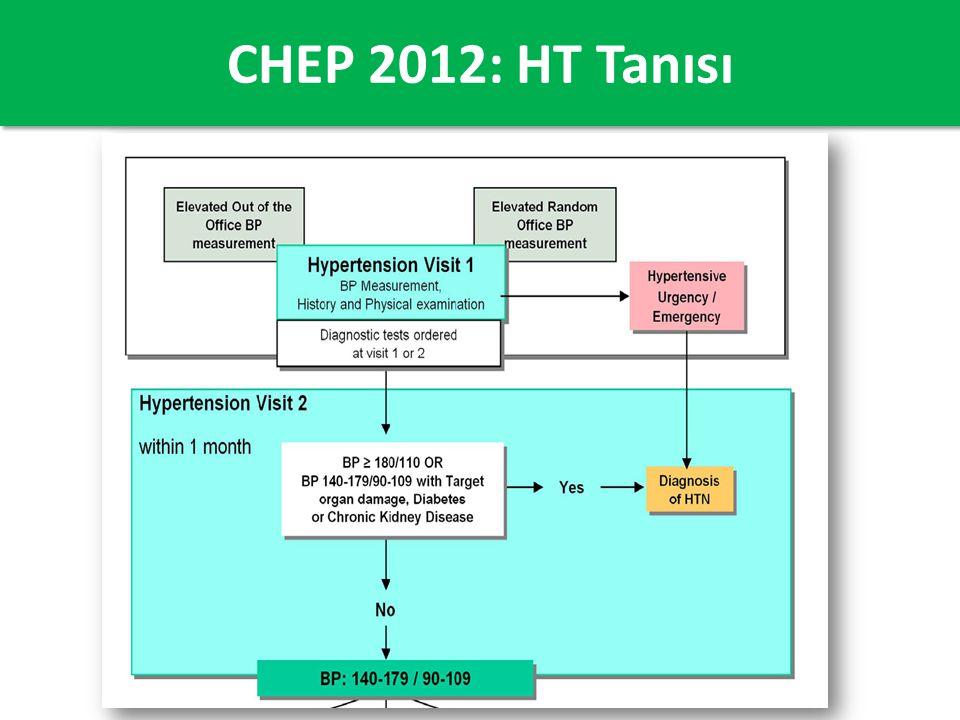 CHEP 2012: HT Tanısı
