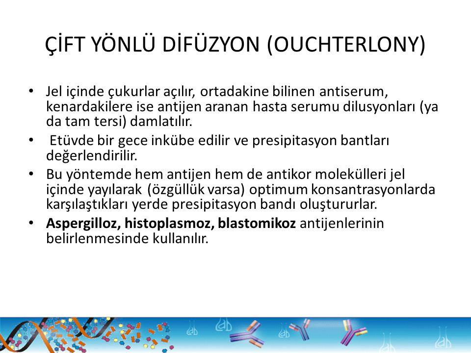 ÇİFT YÖNLÜ DİFÜZYON (OUCHTERLONY)