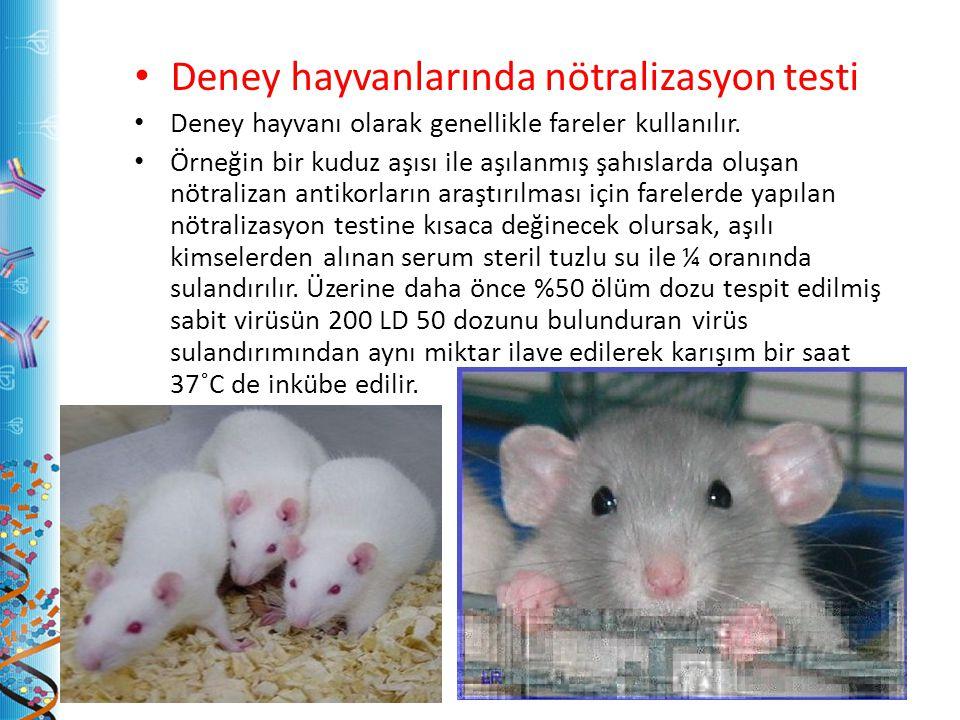 Deney hayvanlarında nötralizasyon testi