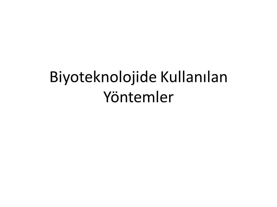 Biyoteknolojide Kullanılan Yöntemler