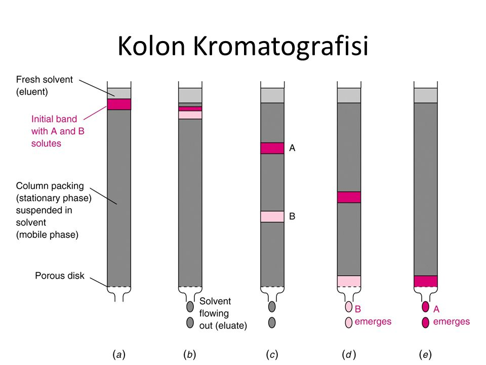 Kolon Kromatografisi