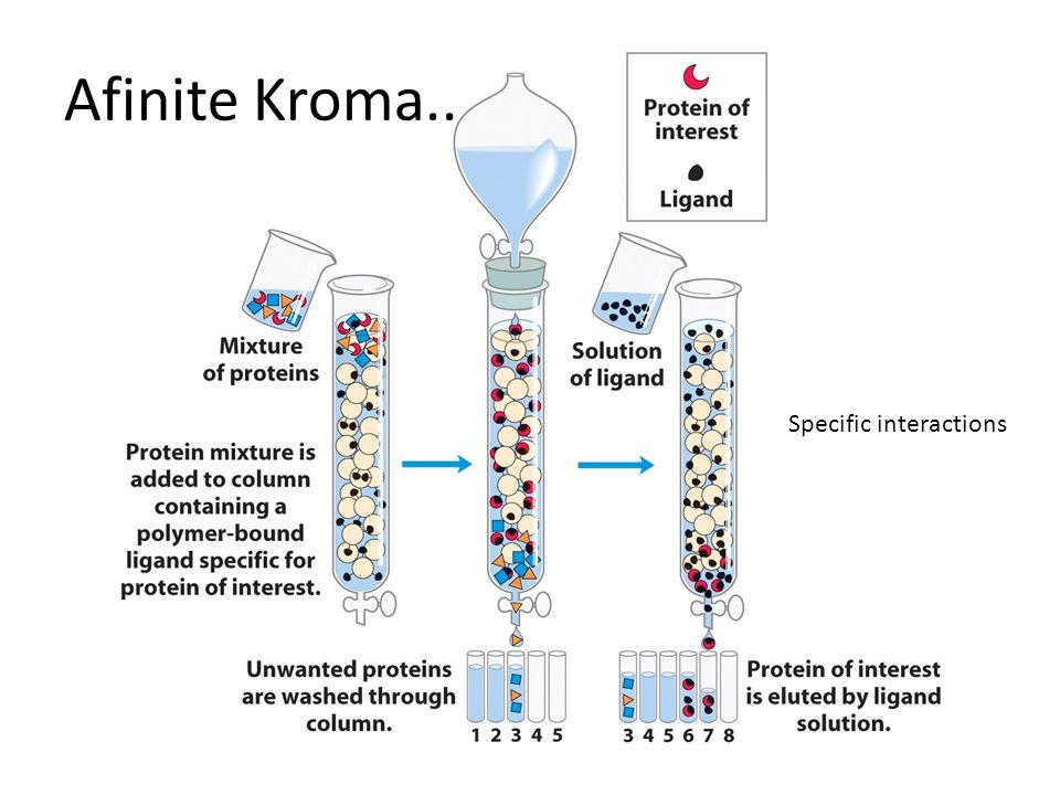 Afinite Kroma.. Specific interactions