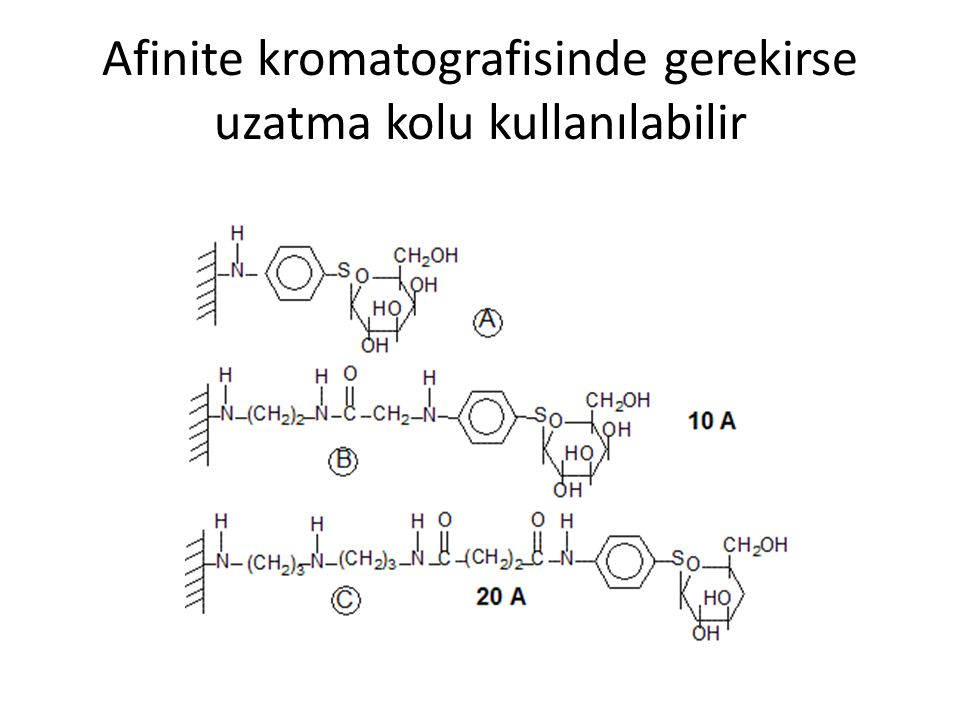 Afinite kromatografisinde gerekirse uzatma kolu kullanılabilir