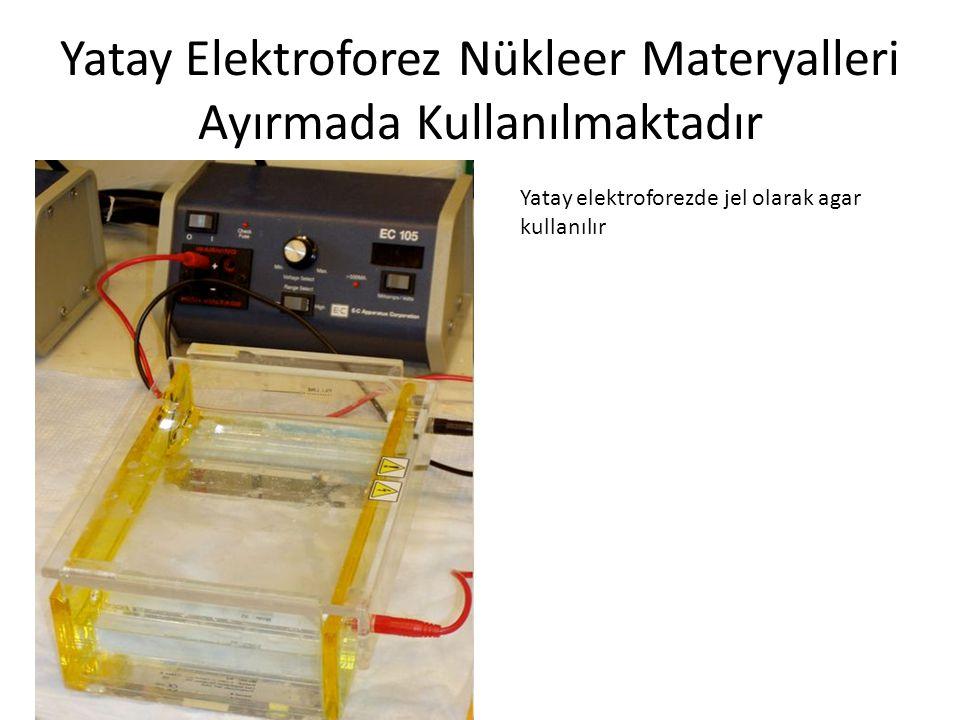Yatay Elektroforez Nükleer Materyalleri Ayırmada Kullanılmaktadır