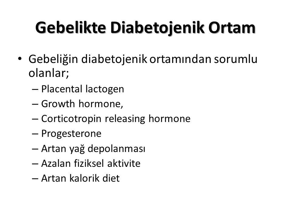 Gebelikte Diabetojenik Ortam