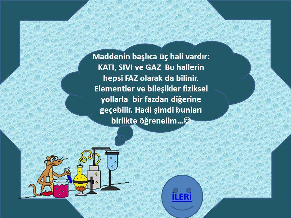 Maddenin başlıca üç hali vardır: KATI, SIVI ve GAZ Bu hallerin hepsi FAZ olarak da bilinir. Elementler ve bileşikler fiziksel yollarla bir fazdan diğerine geçebilir. Hadi şimdi bunları birlikte öğrenelim…