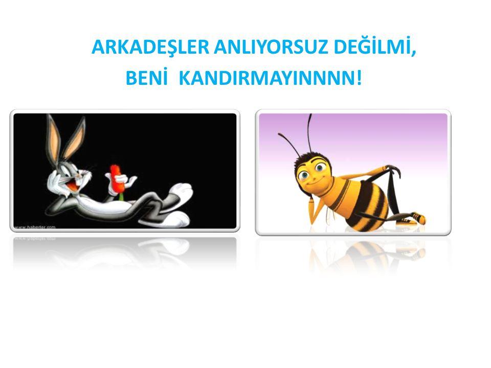 ARKADEŞLER ANLIYORSUZ DEĞİLMİ, BENİ KANDIRMAYINNNN!