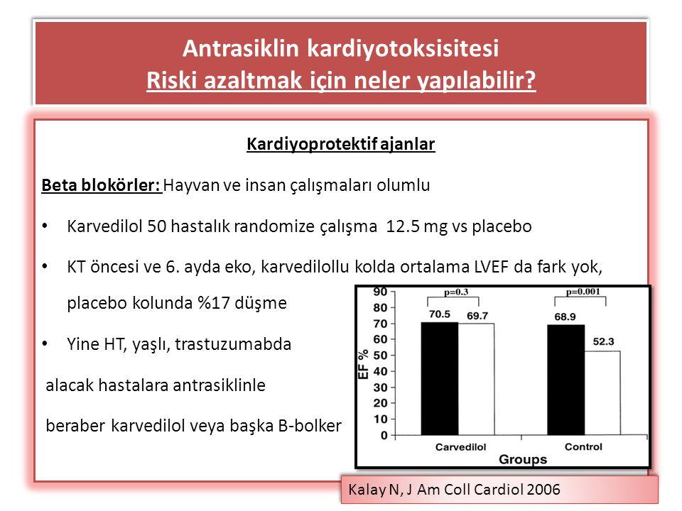 Antrasiklin kardiyotoksisitesi Riski azaltmak için neler yapılabilir