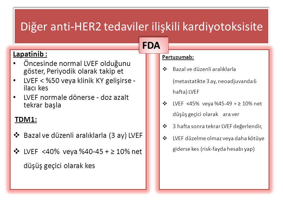 Diğer anti-HER2 tedaviler ilişkili kardiyotoksisite