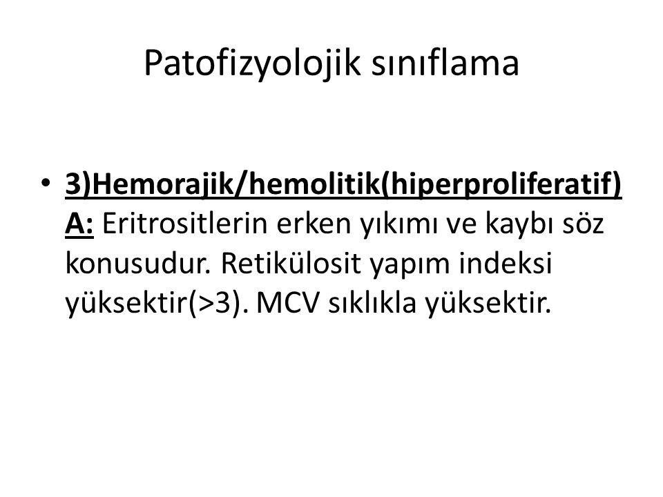Patofizyolojik sınıflama