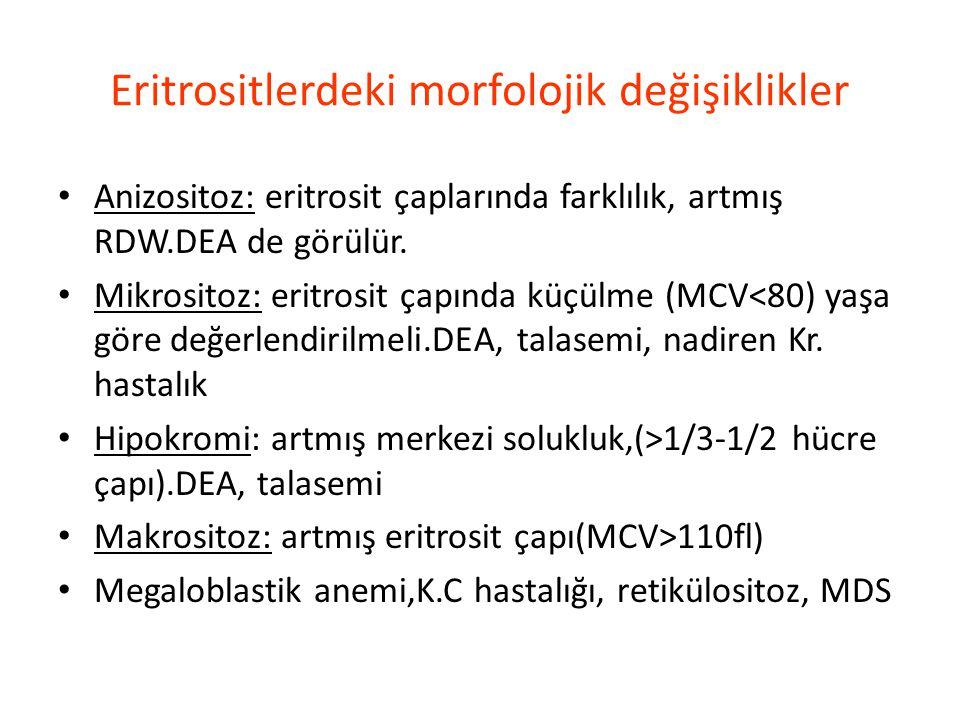 Eritrositlerdeki morfolojik değişiklikler