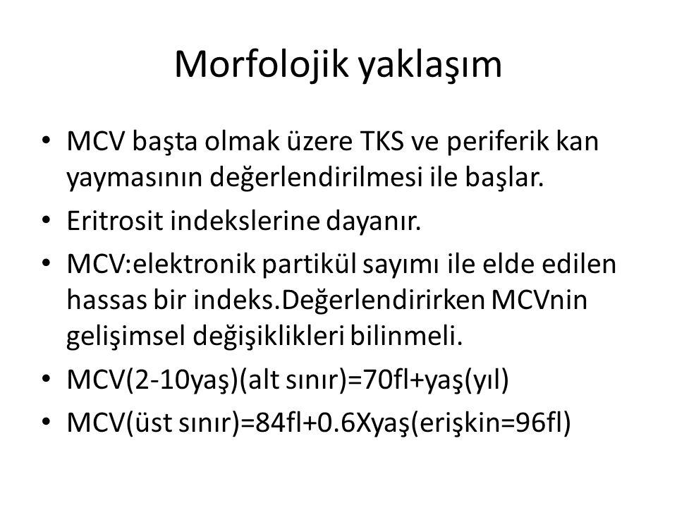 Morfolojik yaklaşım MCV başta olmak üzere TKS ve periferik kan yaymasının değerlendirilmesi ile başlar.
