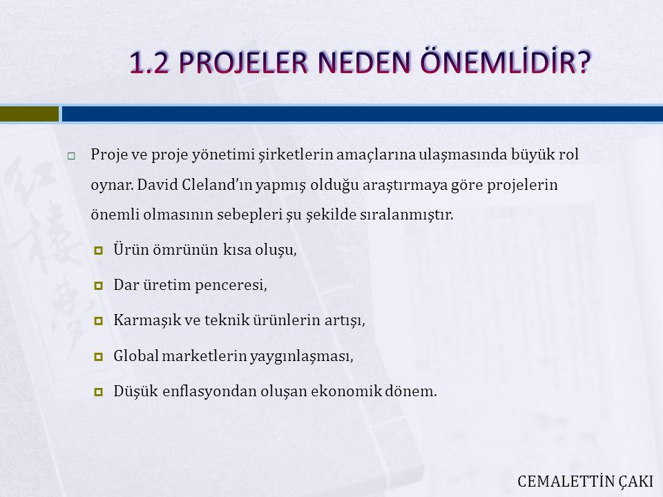1.2 PROJELER NEDEN ÖNEMLİDİR