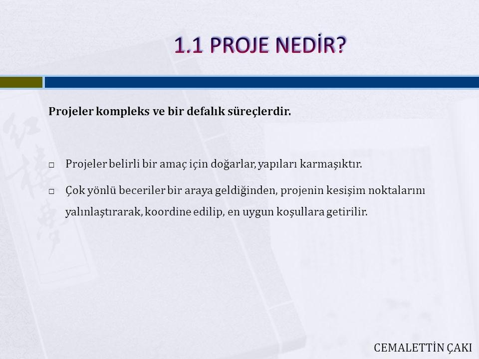 1.1 PROJE NEDİR Projeler kompleks ve bir defalık süreçlerdir.