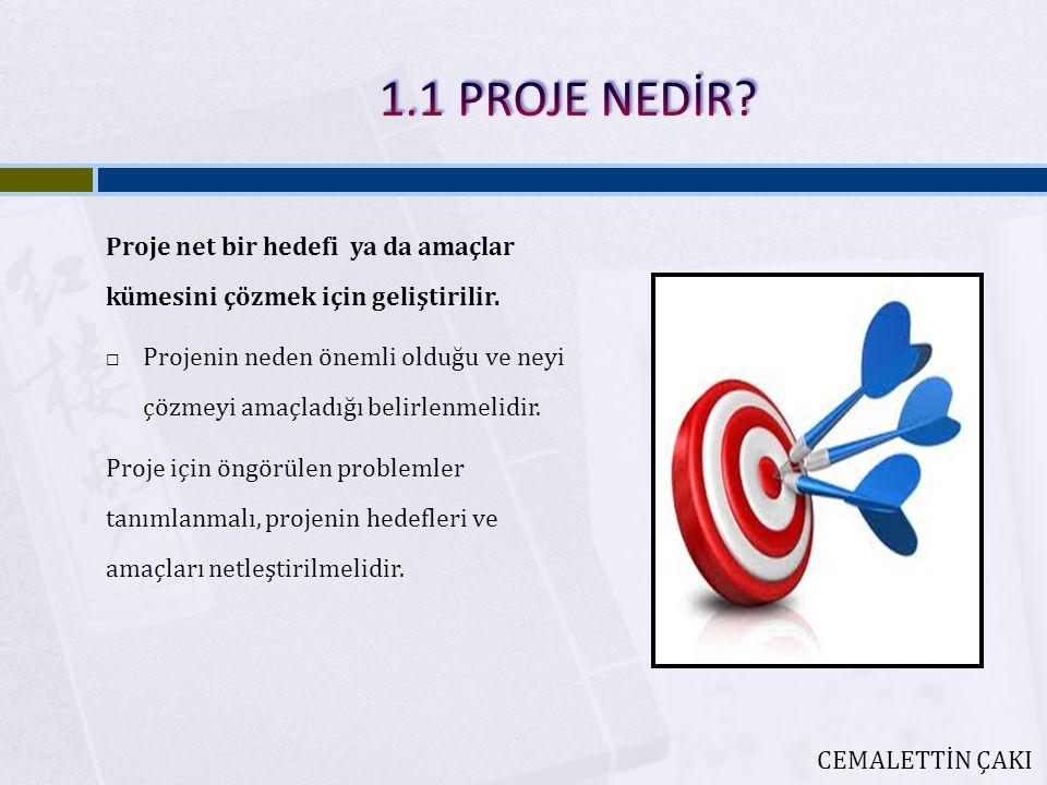 1.1 PROJE NEDİR Proje net bir hedefi ya da amaçlar kümesini çözmek için geliştirilir.