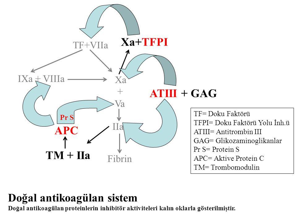 Doğal antikoagülan sistem