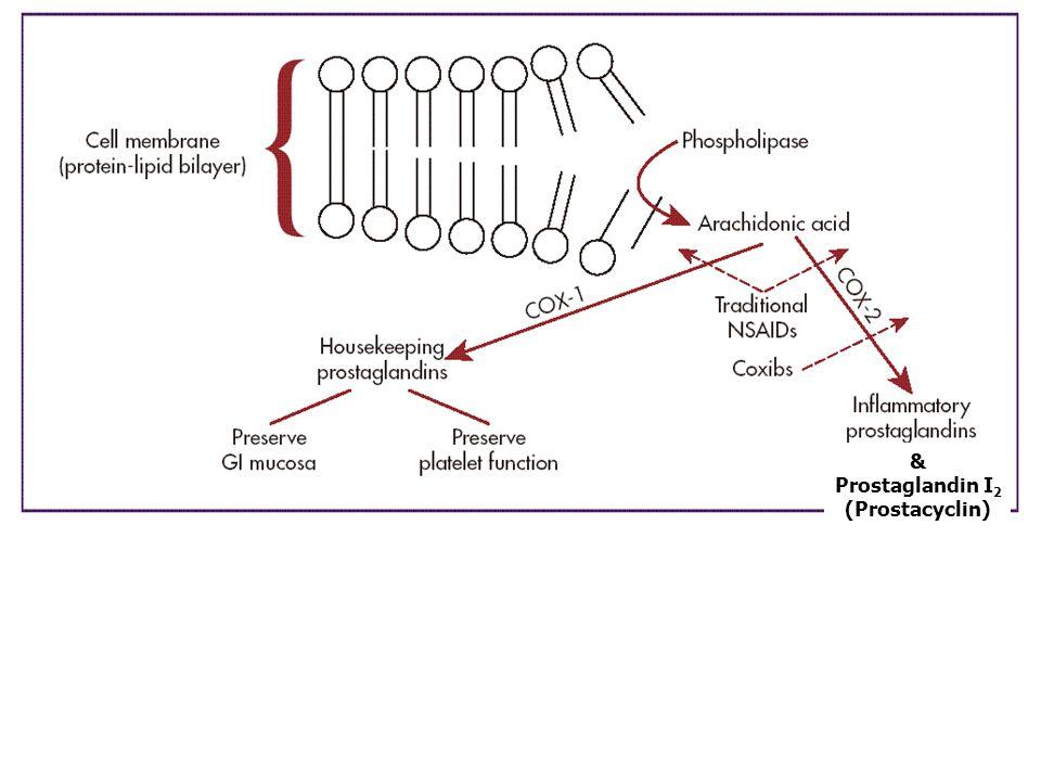& Prostaglandin I2 (Prostacyclin)
