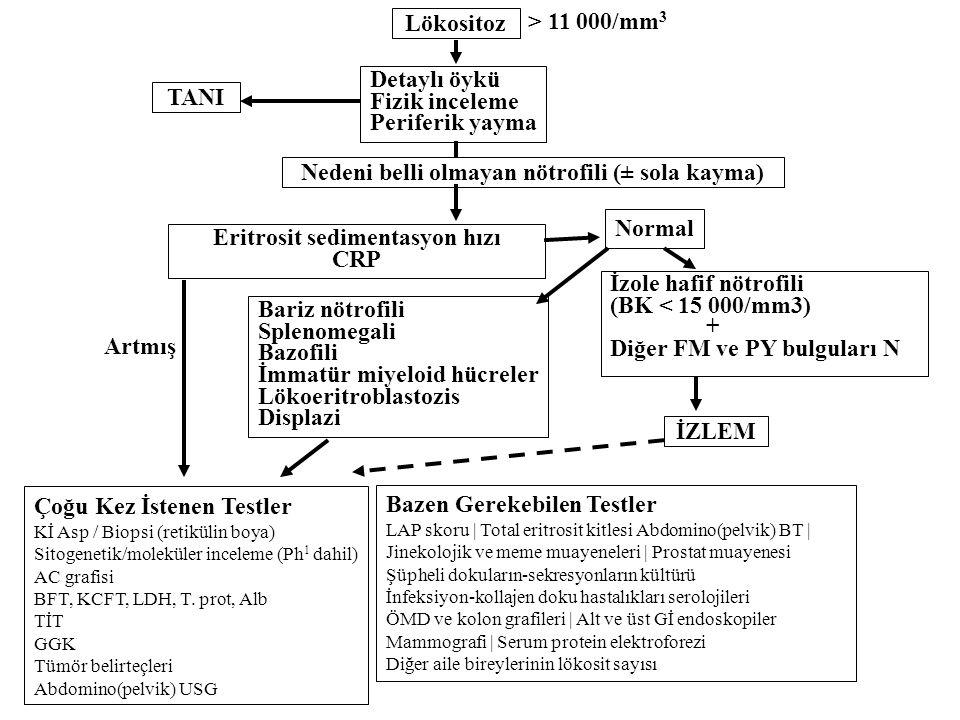Nedeni belli olmayan nötrofili (± sola kayma)