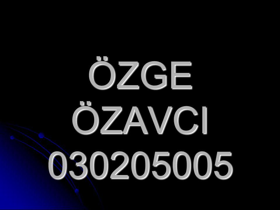 ÖZGE ÖZAVCI 030205005