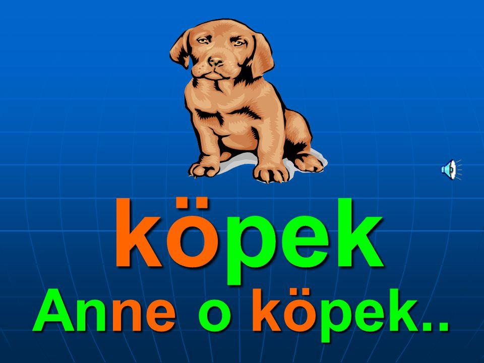 köpek Anne o köpek..