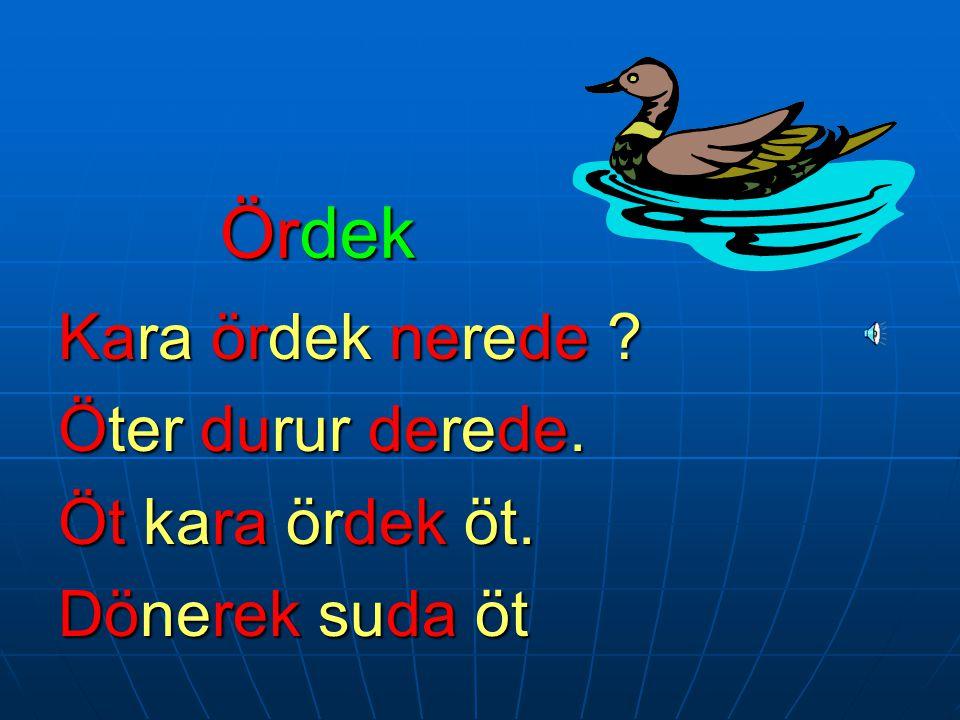 Ördek Kara ördek nerede Öter durur derede. Öt kara ördek öt.
