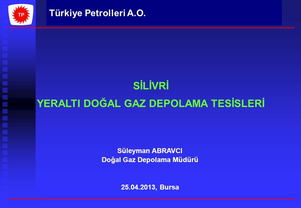 YERALTI DOĞAL GAZ DEPOLAMA TESİSLERİ Doğal Gaz Depolama Müdürü