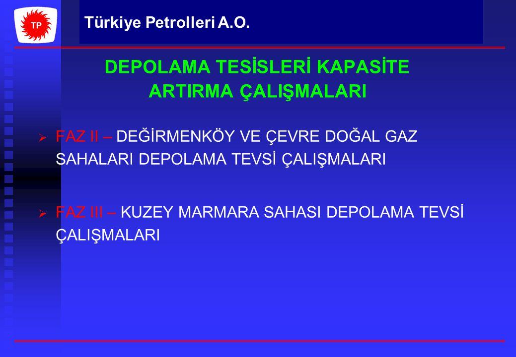 DEPOLAMA TESİSLERİ KAPASİTE ARTIRMA ÇALIŞMALARI