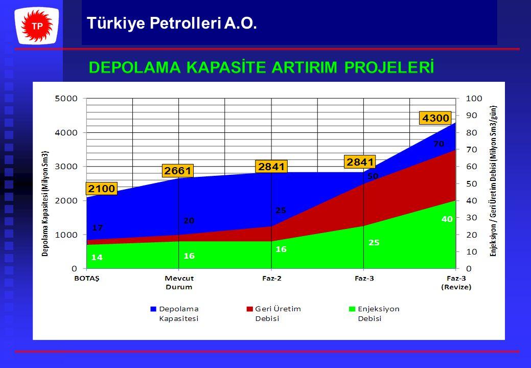 DEPOLAMA KAPASİTE ARTIRIM PROJELERİ