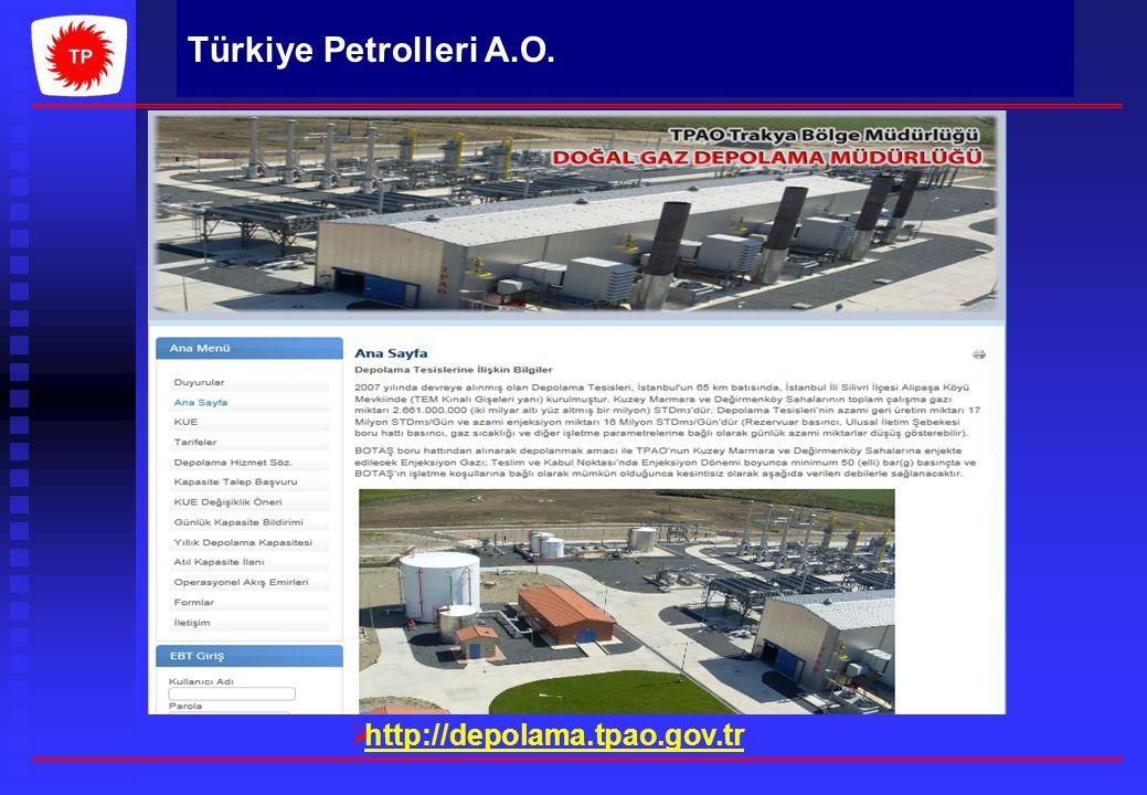 http://depolama.tpao.gov.tr