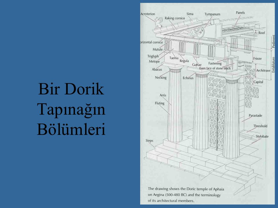 Bir Dorik Tapınağın Bölümleri