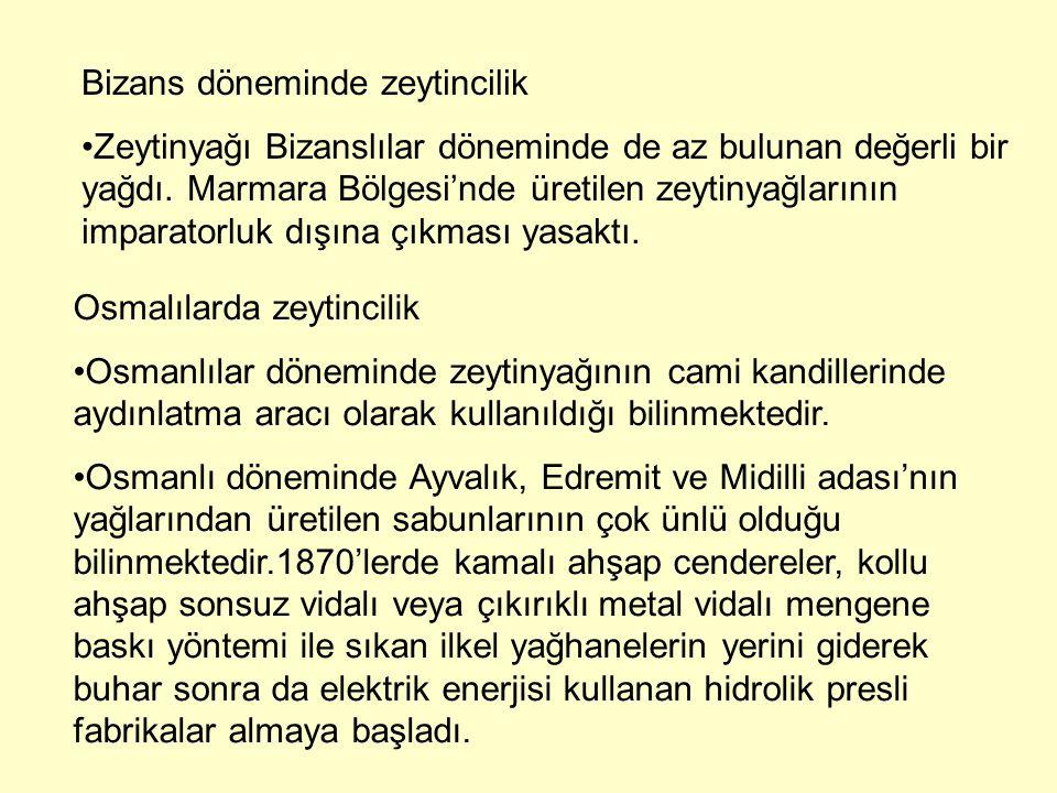Bizans döneminde zeytincilik