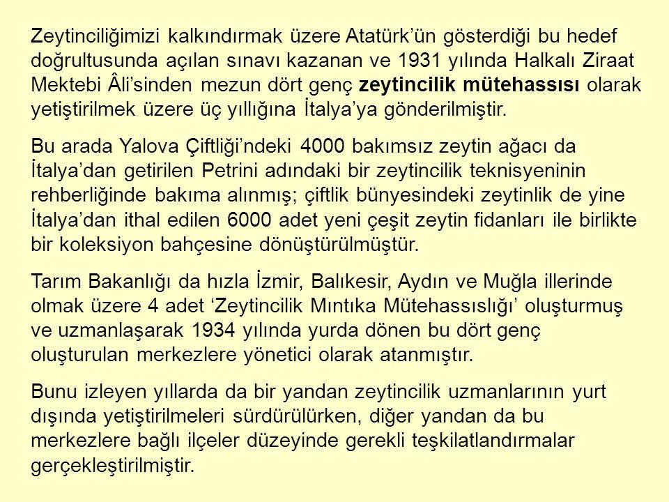 Zeytinciliğimizi kalkındırmak üzere Atatürk'ün gösterdiği bu hedef doğrultusunda açılan sınavı kazanan ve 1931 yılında Halkalı Ziraat Mektebi Âli'sinden mezun dört genç zeytincilik mütehassısı olarak yetiştirilmek üzere üç yıllığına İtalya'ya gönderilmiştir.