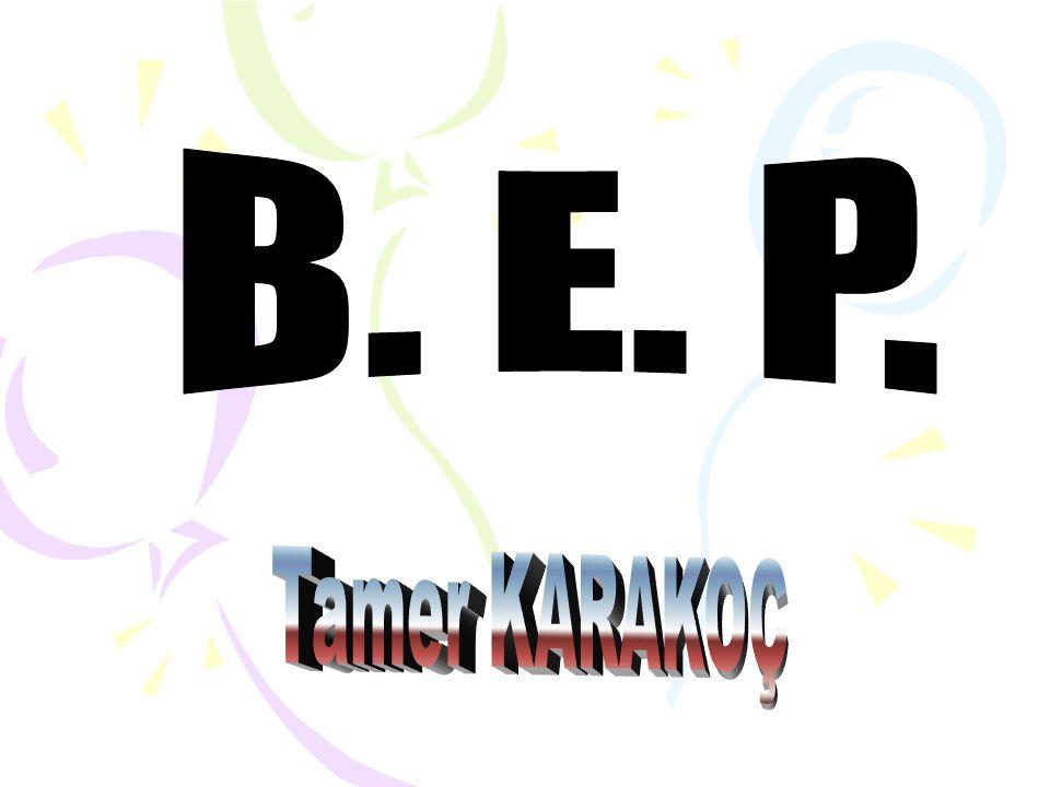 B. E. P. Tamer KARAKOÇ