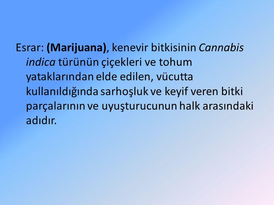 Esrar: (Marijuana), kenevir bitkisinin Cannabis indica türünün çiçekleri ve tohum yataklarından elde edilen, vücutta kullanıldığında sarhoşluk ve keyif veren bitki parçalarının ve uyuşturucunun halk arasındaki adıdır.