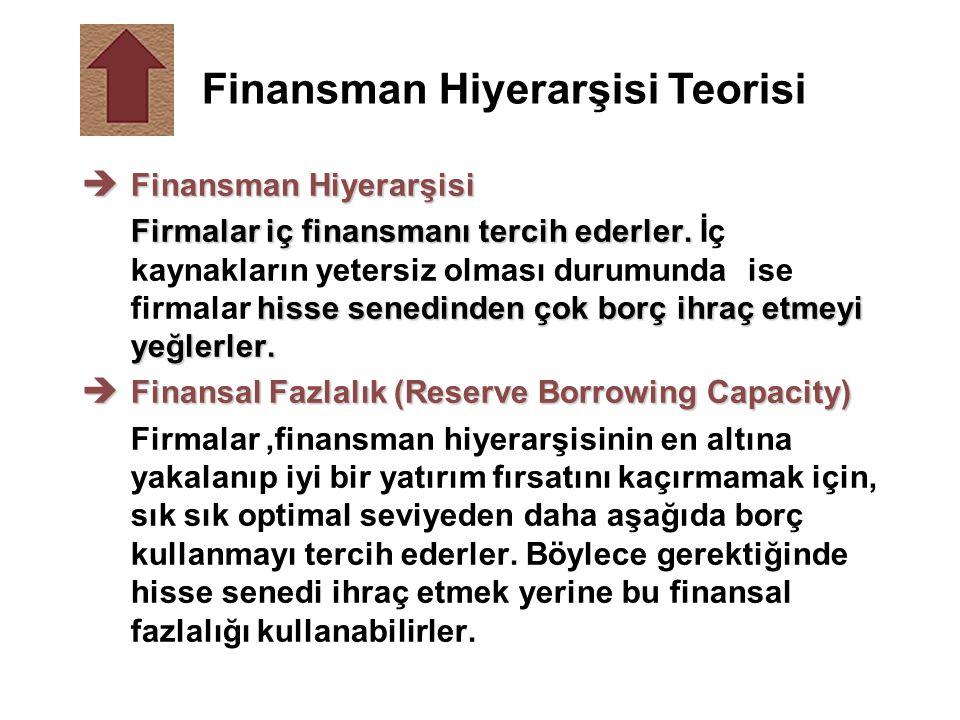 Finansman Hiyerarşisi Teorisi