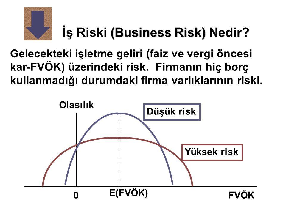 İş Riski (Business Risk) Nedir