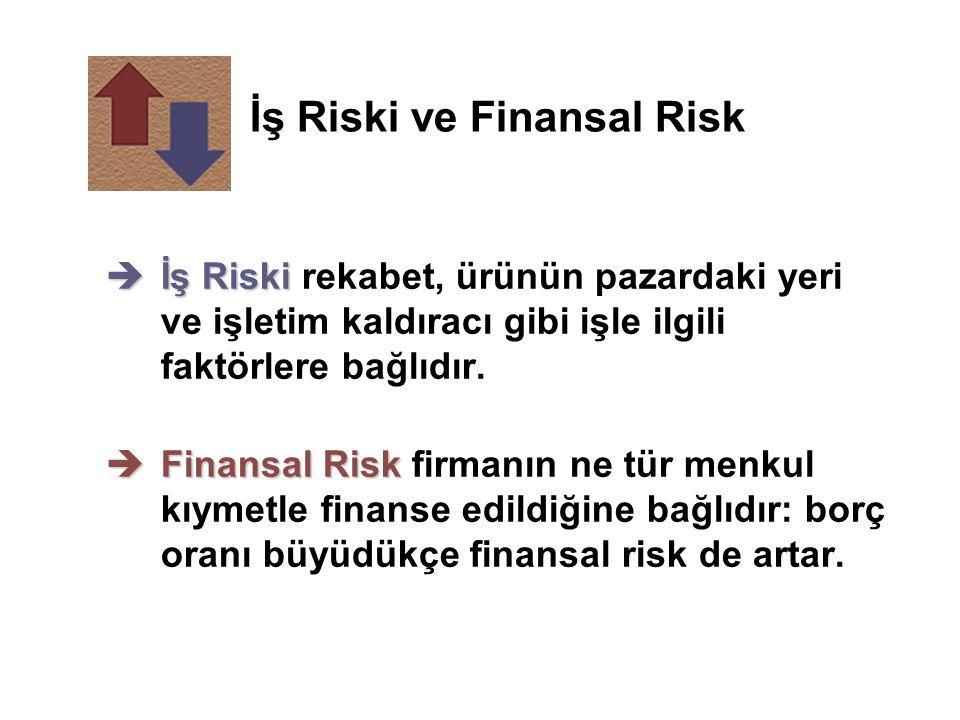 İş Riski ve Finansal Risk