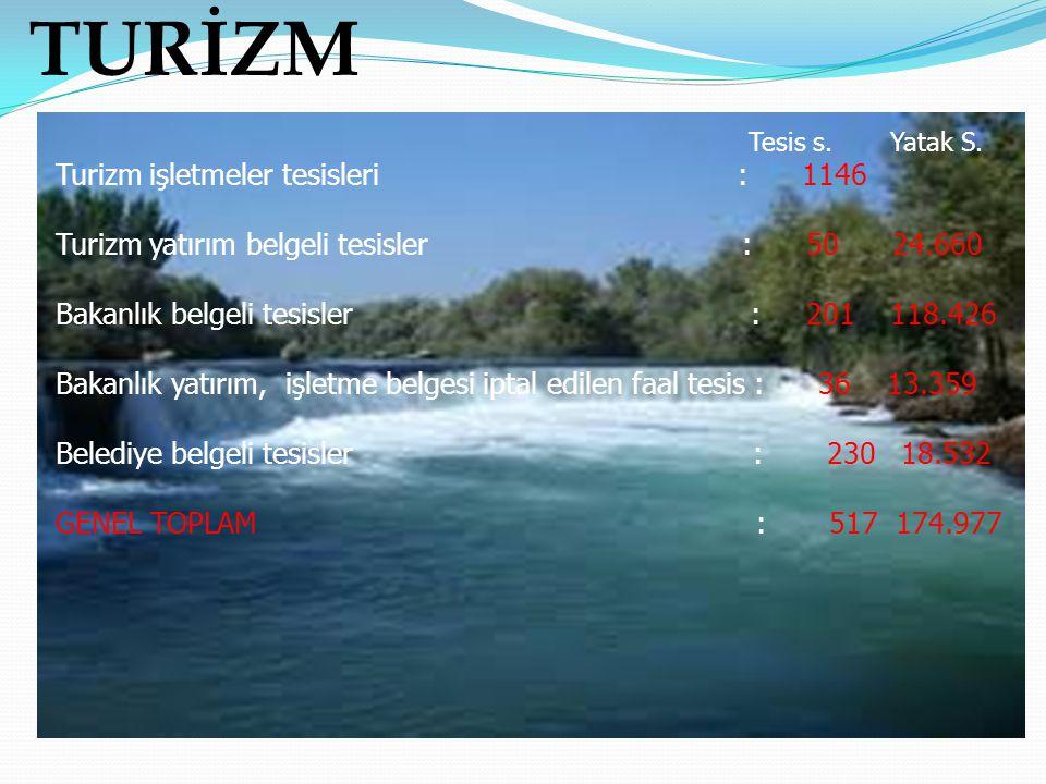 TURİZM Turizm işletmeler tesisleri : 1146