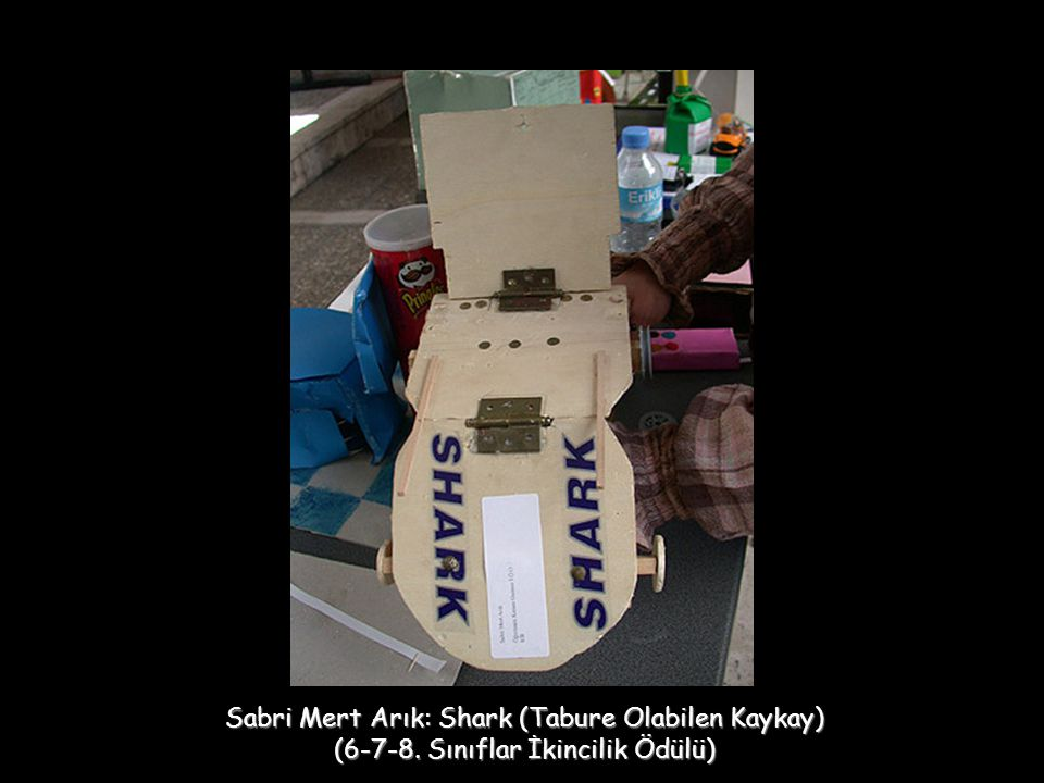 Sabri Mert Arık: Shark (Tabure Olabilen Kaykay)