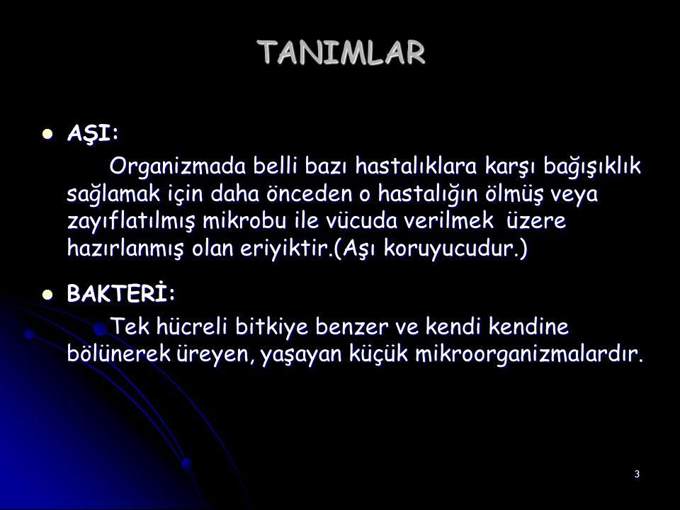 TANIMLAR AŞI: