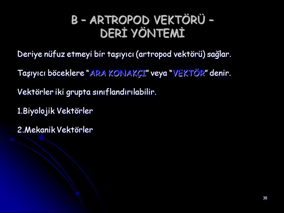 B – ARTROPOD VEKTÖRÜ – DERİ YÖNTEMİ