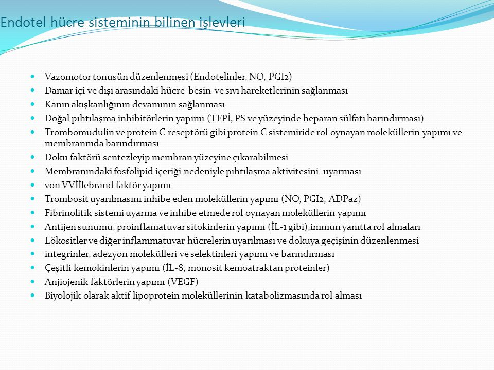 Endotel hücre sisteminin bilinen işlevleri