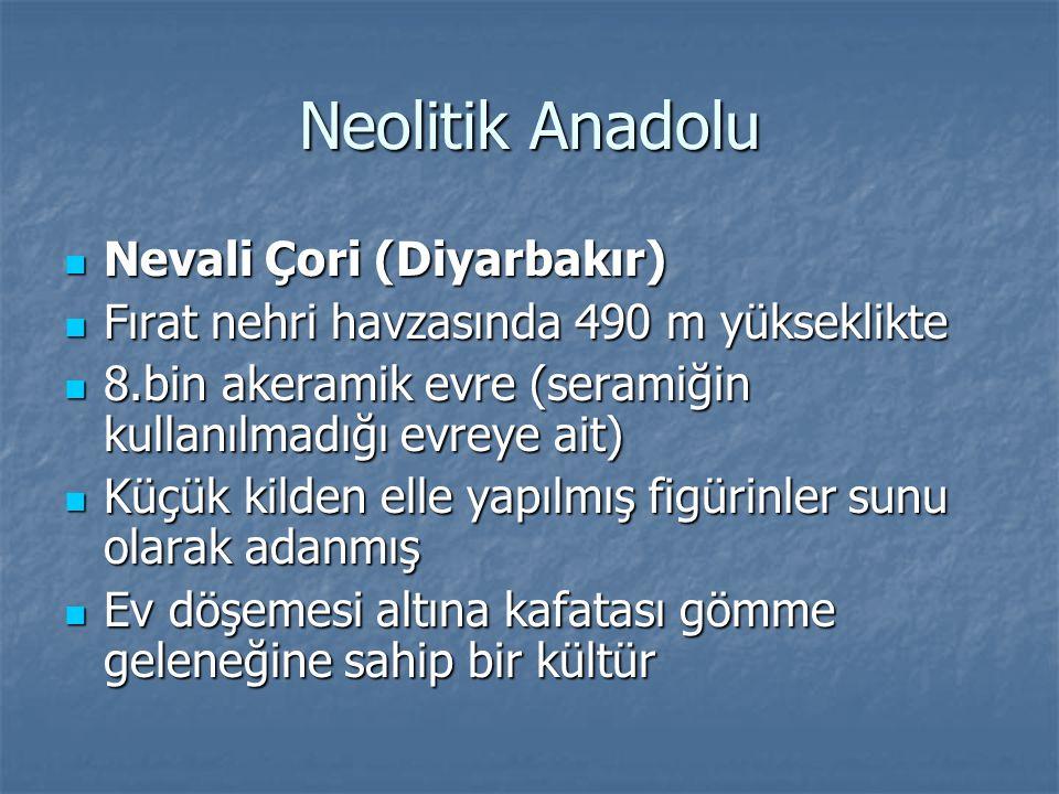 Neolitik Anadolu Nevali Çori (Diyarbakır)