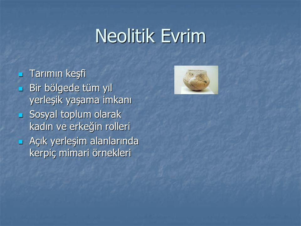 Neolitik Evrim Tarımın keşfi