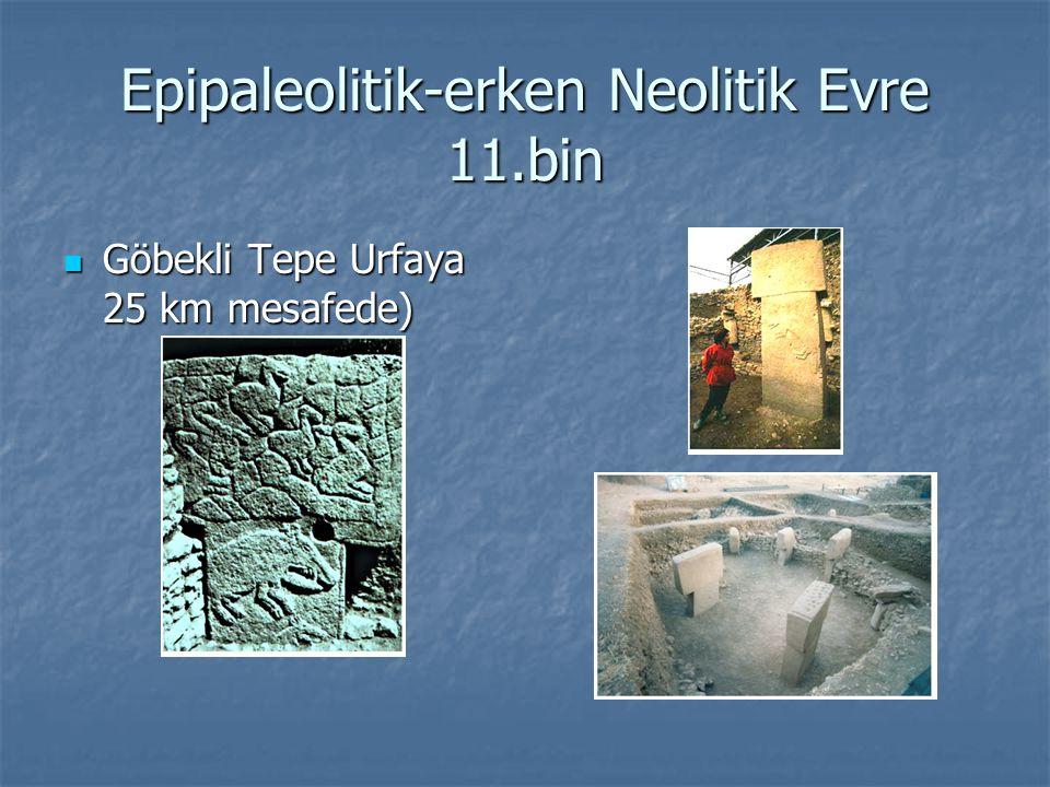 Epipaleolitik-erken Neolitik Evre 11.bin